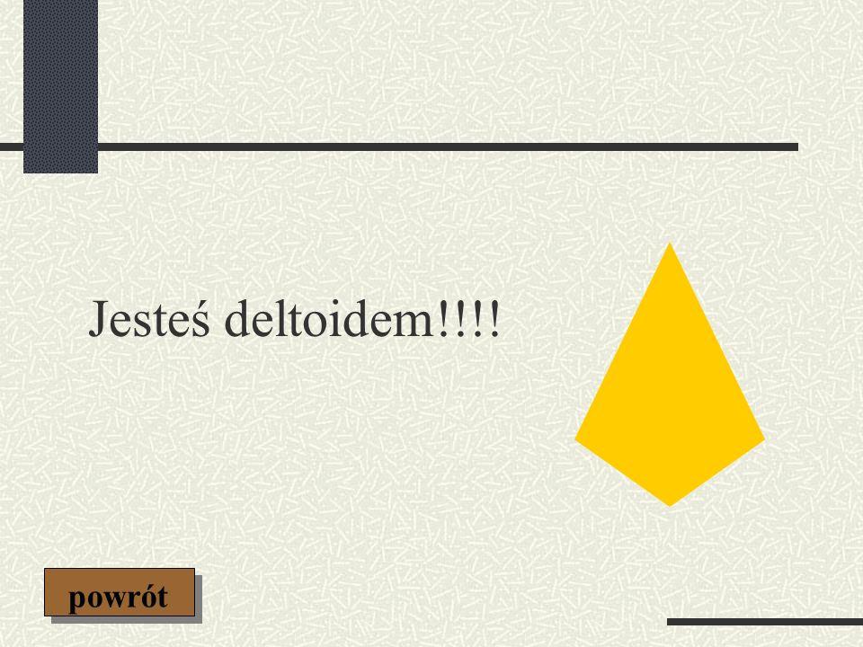 Jesteś deltoidem!!!! powrót