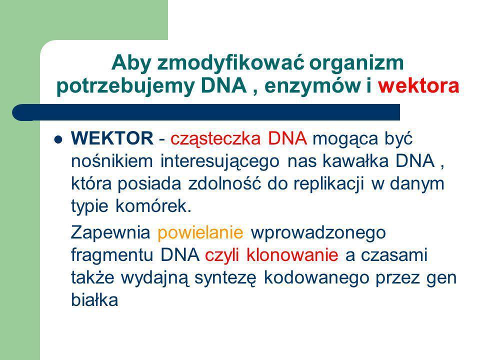 Metody modyfikacji genetycznych