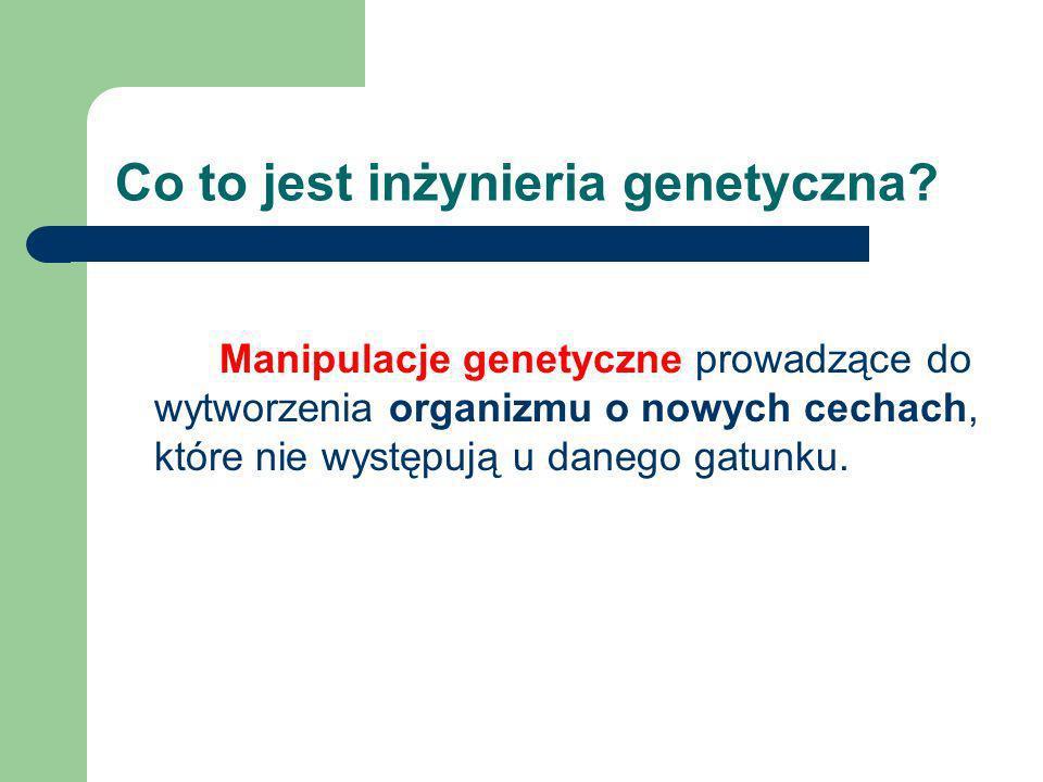 Podstawy inżynierii genetycznej i jej zastosowanie Maja Karaś