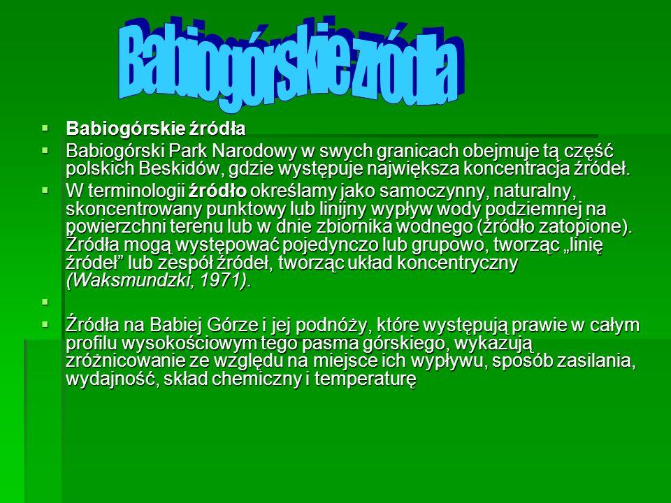 Babiogórskie źródła Babiogórskie źródła Babiogórski Park Narodowy w swych granicach obejmuje tą część polskich Beskidów, gdzie występuje największa ko