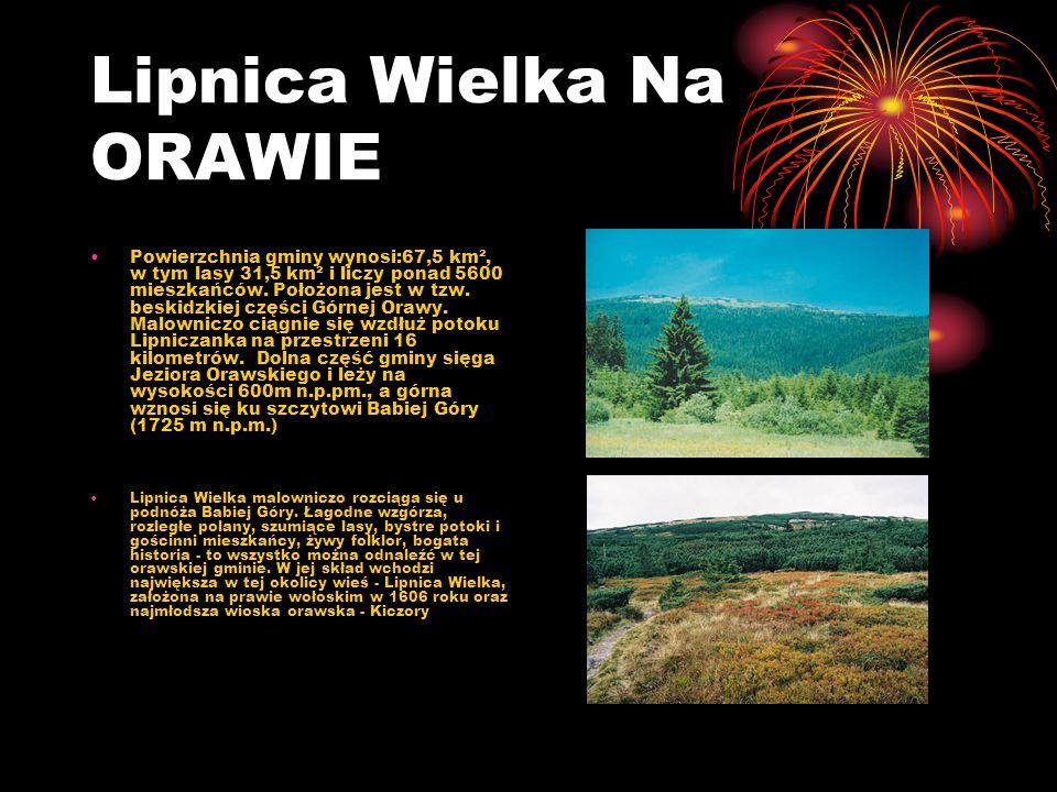 Lipnica Wielka Na ORAWIE Powierzchnia gminy wynosi:67,5 km², w tym lasy 31,5 km² i liczy ponad 5600 mieszkańców. Położona jest w tzw. beskidzkiej częś