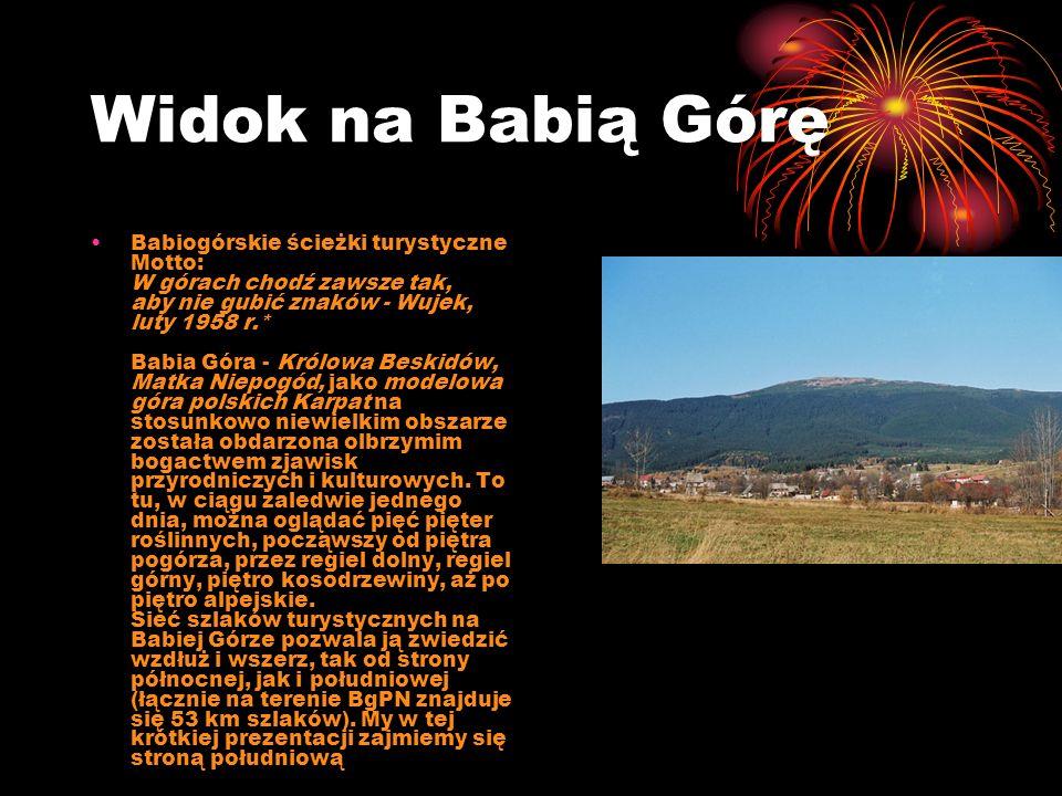 Widok na Babią Górę Babiogórskie ścieżki turystyczne Motto: W górach chodź zawsze tak, aby nie gubić znaków - Wujek, luty 1958 r.* Babia Góra - Królow