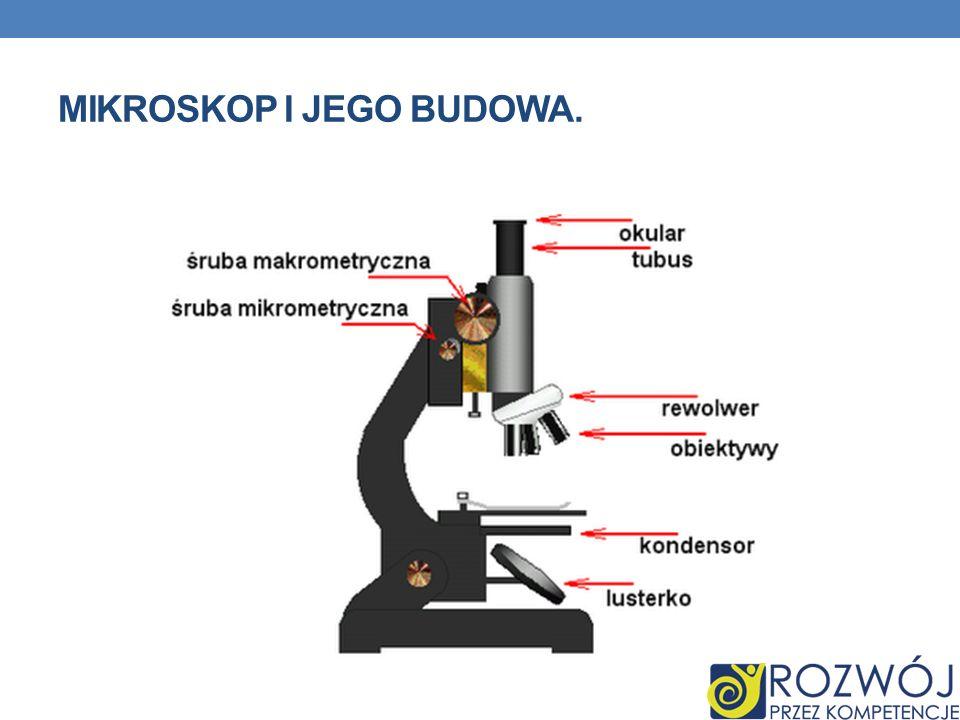 MIKROSKOP I JEGO BUDOWA.