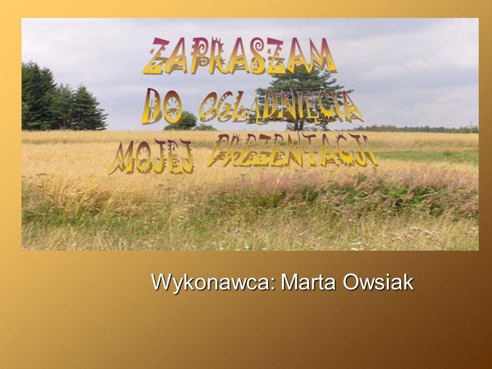 Wykonawca: Marta Owsiak