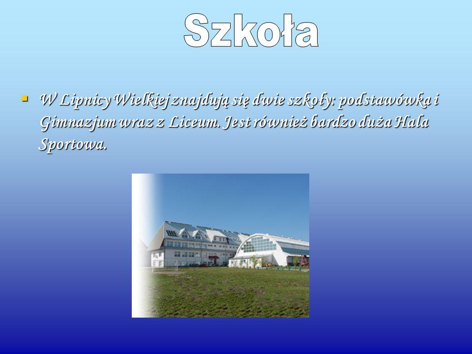 W Lipnicy Wielkiej znajdują się dwie szkoły: podstawówka i Gimnazjum wraz z Liceum. Jest również bardzo duża Hala Sportowa. W Lipnicy Wielkiej znajduj