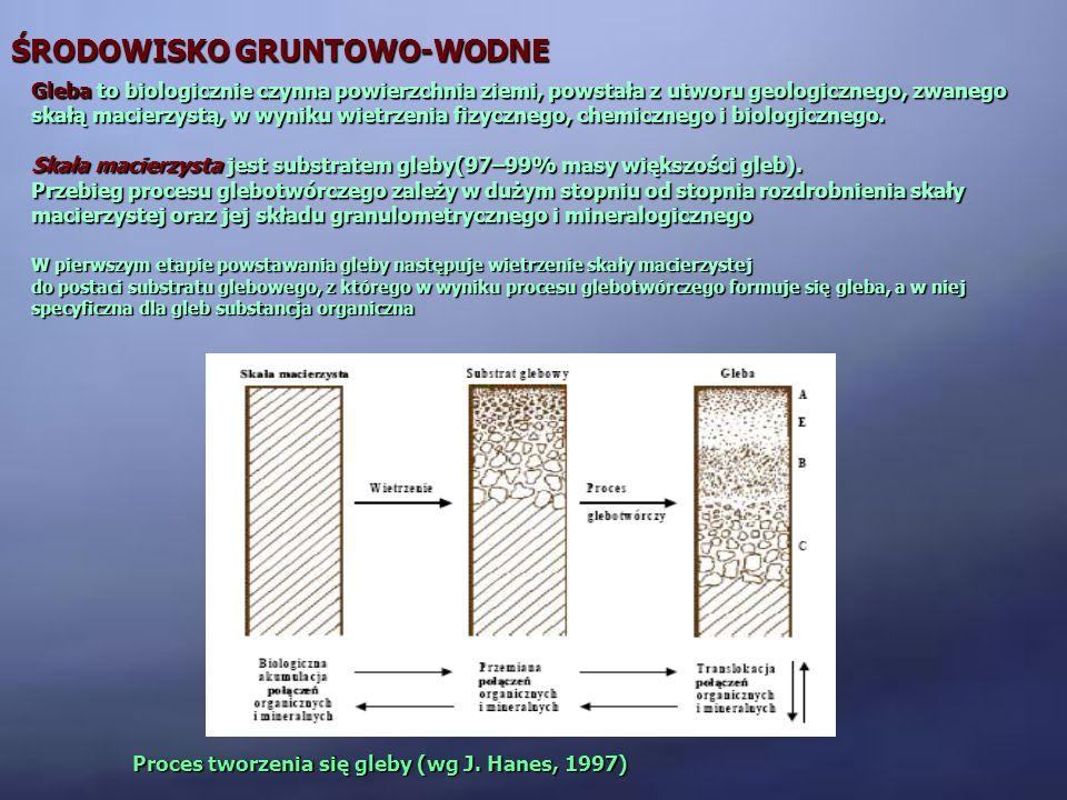 ŚRODOWISKO GRUNTOWO-WODNE BIODEGRADACJA ZANIECZYSZCZEŃ W GRUNCIE Zanieczyszczenia organiczne są podatne na biodegradację, oprócz bakterii biorą w nich udział również grzyby WARUNKIAEROBOWEWARUNKIANAEROBOWE BAKTERIE GRZYBY WPŁYW WARUNKÓW: odczyn roztworu glebowego optymalny dla bakterii jest odczyn obojętny (6,5 >pH > 7,5, max 9,0), dla grzybów lekko kwaśny (4,5 > pH > 6,0), temperatura optymalna temperatura dla bakterii i grzybów mieści się w granicach 30-38 °C, co oznacza, że w naszej strefie klimatycznej w okresie jesienno-- zimowym biodegradacja w glebie ulega znacznemu spowolnieniu, wilgotność gleby i dostęp do soli mineralnych niezbędnych składników do rozwoju mikroorganizmów i reakcji biodegradacji, dostęp tlenu szybkość procesów aerobowych jest znacznie większa aniżeli anaerobowych, większa jest również populacja mikroorganizmów aerobowych