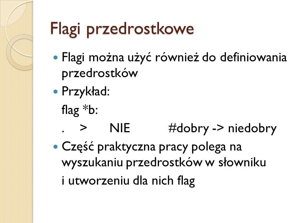 Flagi przedrostkowe Flagi można użyć również do definiowania przedrostków Przykład: flag *b:.>NIE#dobry -> niedobry Część praktyczna pracy polega na w