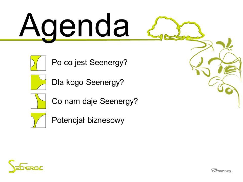 Agenda Po co jest Seenergy? Dla kogo Seenergy? Co nam daje Seenergy? Potencjał biznesowy
