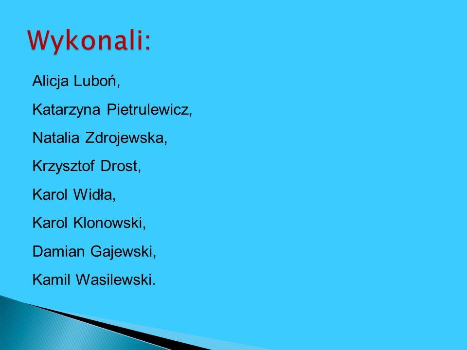 Alicja Luboń, Katarzyna Pietrulewicz, Natalia Zdrojewska, Krzysztof Drost, Karol Widła, Karol Klonowski, Damian Gajewski, Kamil Wasilewski.