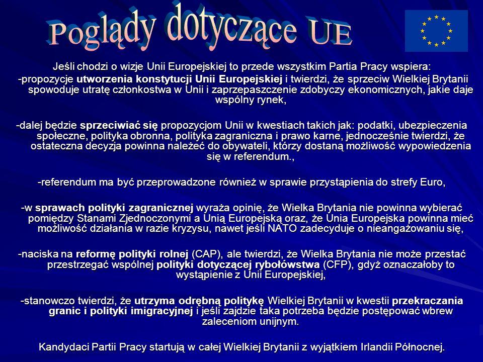 Jeśli chodzi o wizje Unii Europejskiej to przede wszystkim Partia Pracy wspiera: -propozycje utworzenia konstytucji Unii Europejskiej i twierdzi, że s