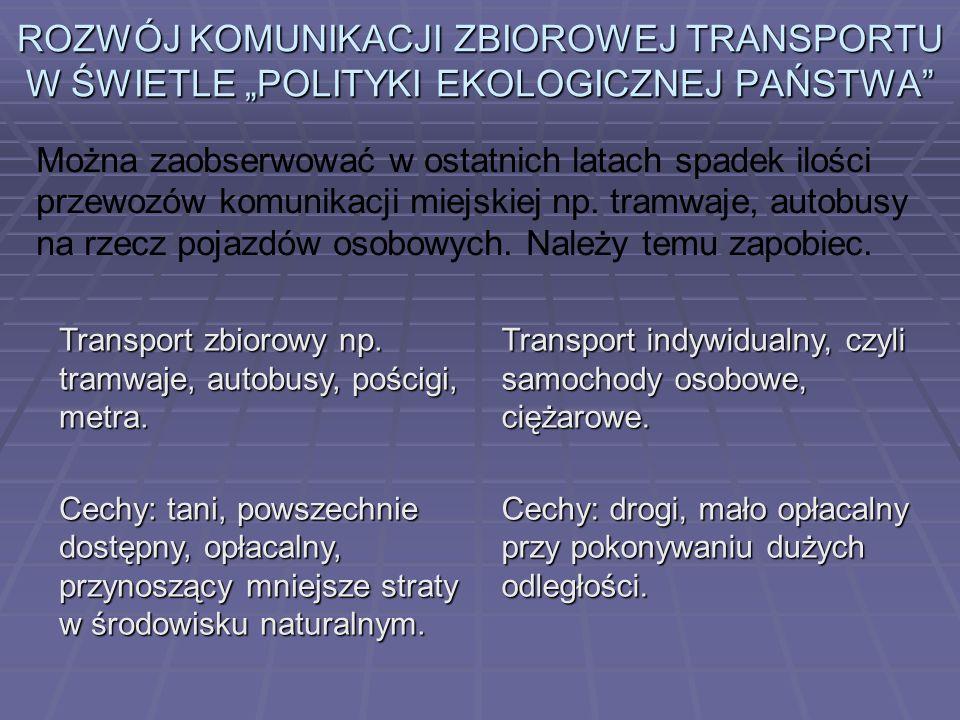 Wierzę, że w przyszłości proekologiczne rodzaje transportu w Polsce uzyskają znacznie większą rangę niż obecnie.