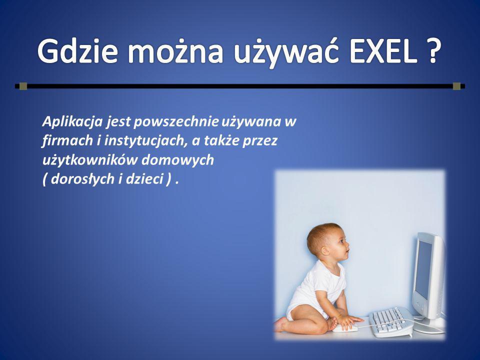 Aplikacja jest powszechnie używana w firmach i instytucjach, a także przez użytkowników domowych ( dorosłych i dzieci ).
