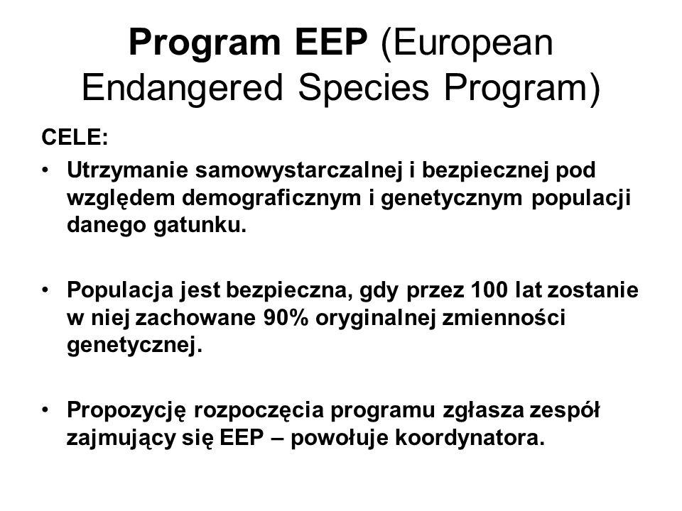 Program EEP (European Endangered Species Program) CELE: Utrzymanie samowystarczalnej i bezpiecznej pod względem demograficznym i genetycznym populacji