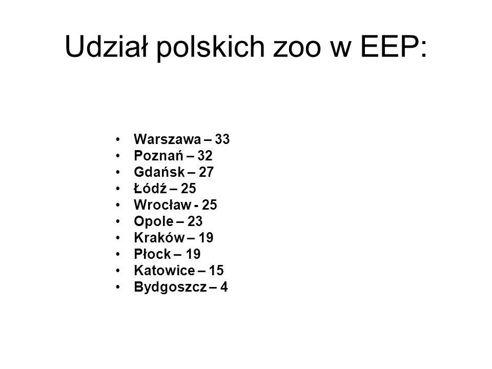 Udział polskich zoo w EEP: Warszawa – 33 Poznań – 32 Gdańsk – 27 Łódź – 25 Wrocław - 25 Opole – 23 Kraków – 19 Płock – 19 Katowice – 15 Bydgoszcz – 4