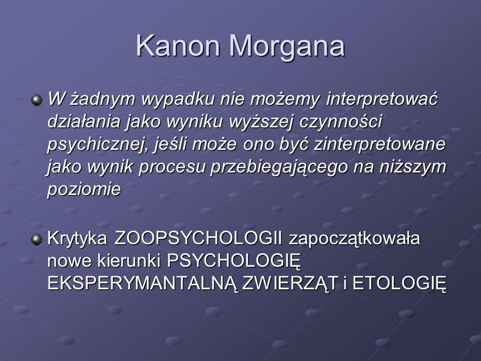 Kanon Morgana W żadnym wypadku nie możemy interpretować działania jako wyniku wyższej czynności psychicznej, jeśli może ono być zinterpretowane jako w