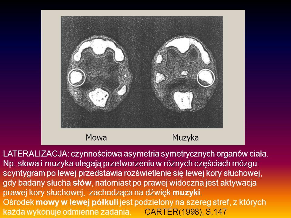 LATERALIZACJA: czynnościowa asymetria symetrycznych organów ciała. Np. słowa i muzyka ulegają przetworzeniu w różnych częściach mózgu: scyntygram po l
