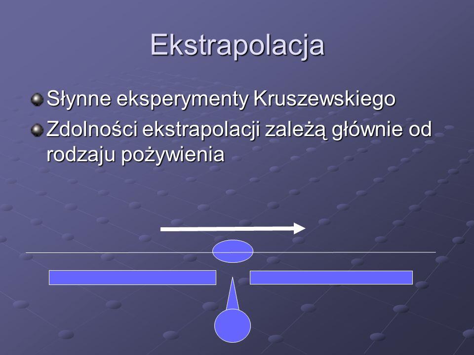 Ekstrapolacja Słynne eksperymenty Kruszewskiego Zdolności ekstrapolacji zależą głównie od rodzaju pożywienia