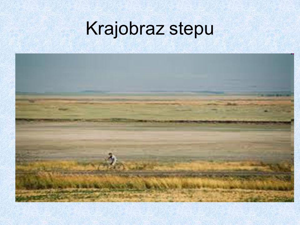 Krajobraz stepu