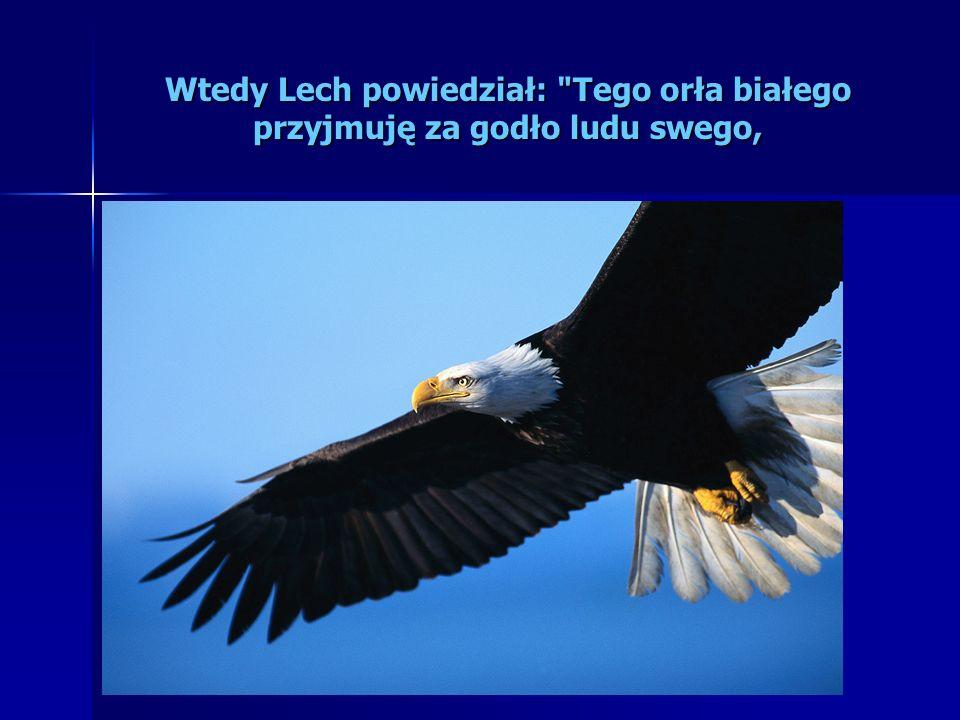 Wtedy Lech powiedział: