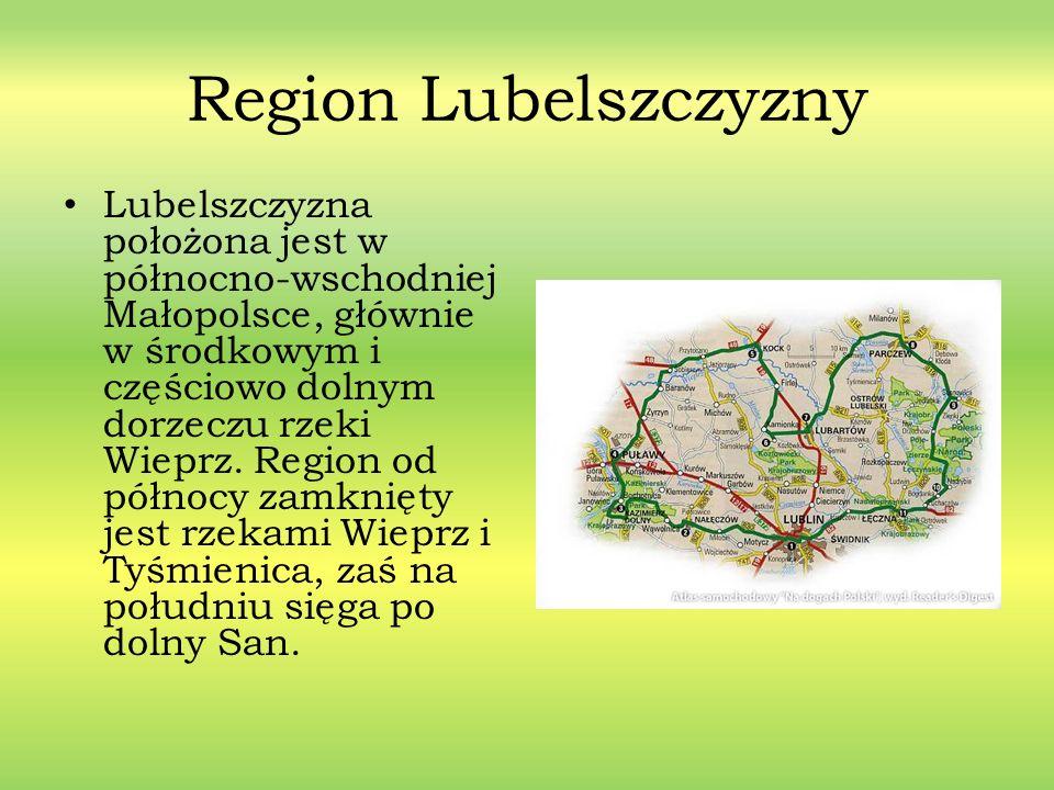 Region Lubelszczyzny Lubelszczyzna położona jest w północno-wschodniej Małopolsce, głównie w środkowym i częściowo dolnym dorzeczu rzeki Wieprz. Regio