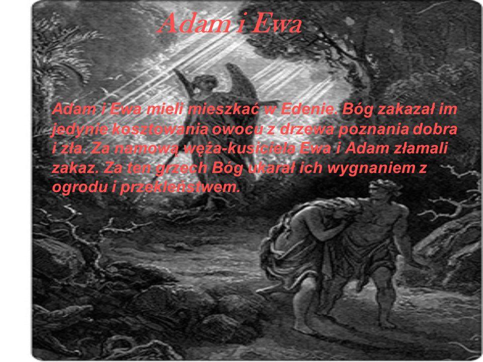 Adam i Ewa Adam i Ewa mieli mieszkać w Edenie. Bóg zakazał im jedynie kosztowania owocu z drzewa poznania dobra i zła. Za namową węża-kusiciela Ewa i