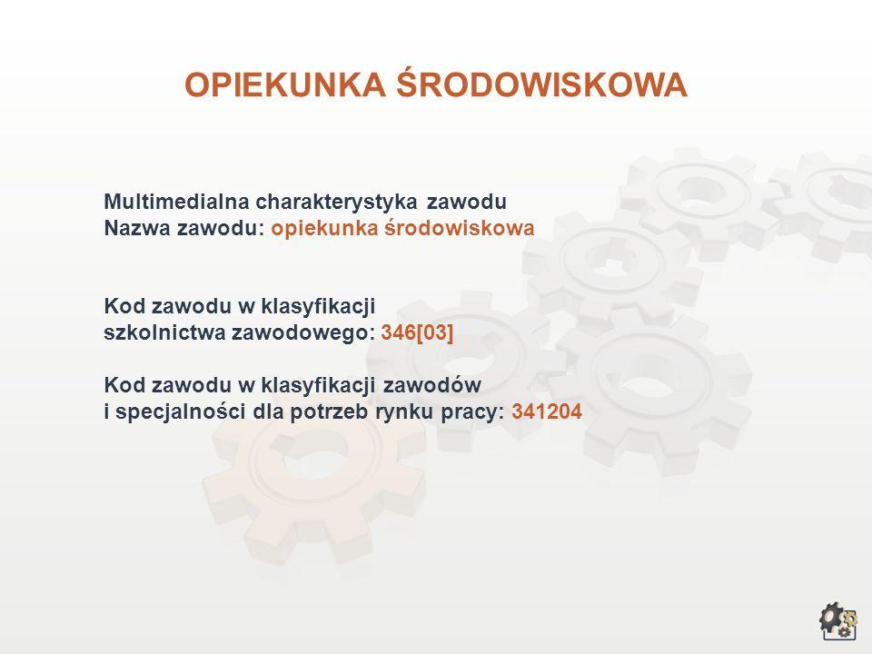 OPIEKUNKA ŚRODOWISKOWA wersja dla gimnazjum i szkół ponadgimnazjalnych