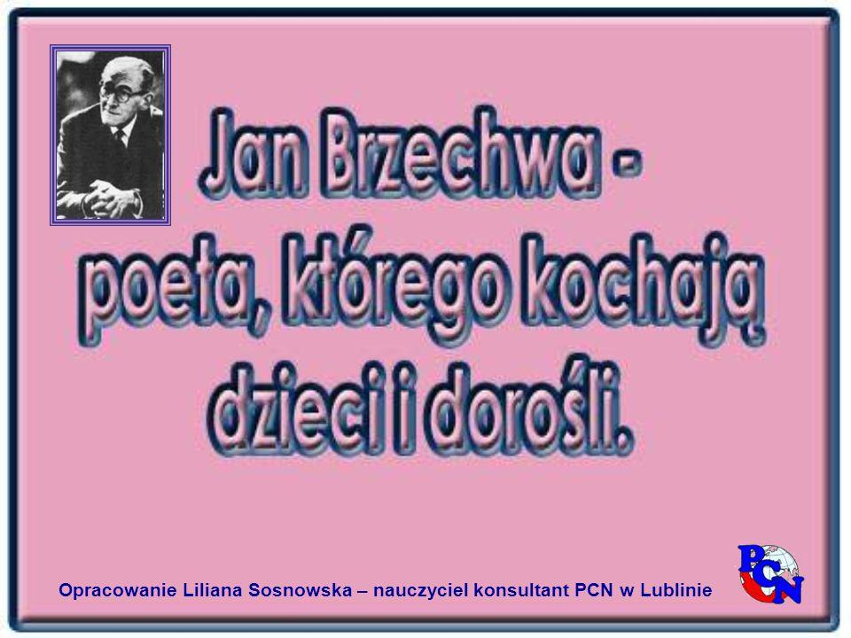 Opracowanie Liliana Sosnowska – nauczyciel konsultant PCN w Lublinie