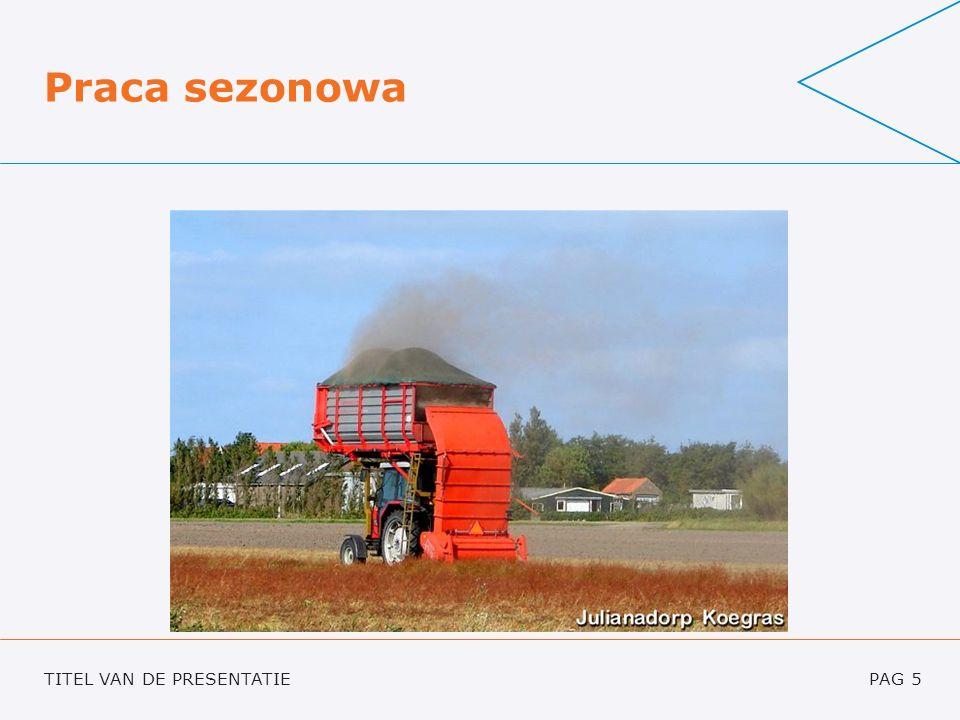 TITEL VAN DE PRESENTATIEPAG 16 www.seasonalwork.nlwww.seasonalwork.nl – jak to działa.