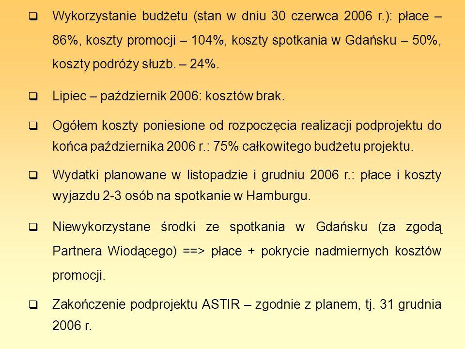 Wykorzystanie budżetu (stan w dniu 30 czerwca 2006 r.): płace – 86%, koszty promocji – 104%, koszty spotkania w Gdańsku – 50%, koszty podróży służb. –
