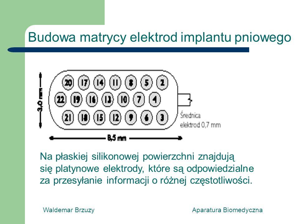 Waldemar Brzuzy Aparatura Biomedyczna Budowa matrycy elektrod implantu pniowego Na płaskiej silikonowej powierzchni znajdują się platynowe elektrody, które są odpowiedzialne za przesyłanie informacji o różnej częstotliwości.