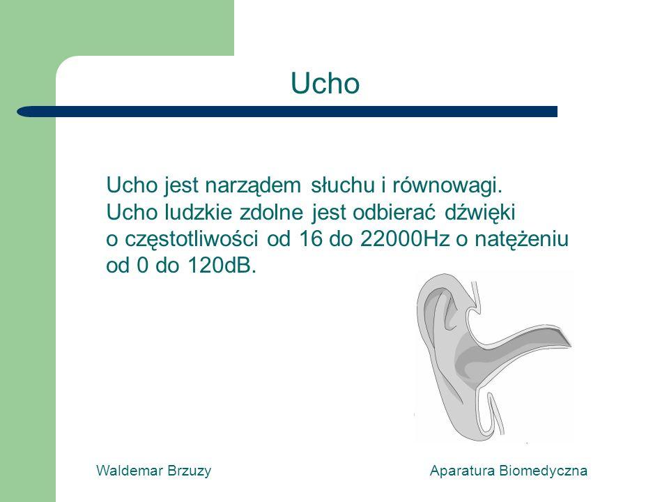 Waldemar Brzuzy Aparatura Biomedyczna Ucho jest narządem słuchu i równowagi. Ucho ludzkie zdolne jest odbierać dźwięki o częstotliwości od 16 do 22000