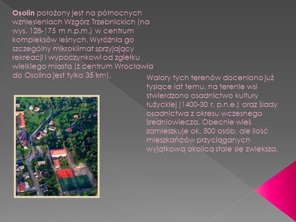 Osolin położony jest na północnych wzniesieniach Wzgórz Trzebnickich (na wys.