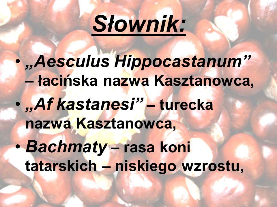 Słownik: Aesculus Hippocastanum – łacińska nazwa Kasztanowca, Af kastanesi – turecka nazwa Kasztanowca, Bachmaty – rasa koni tatarskich – niskiego wzr