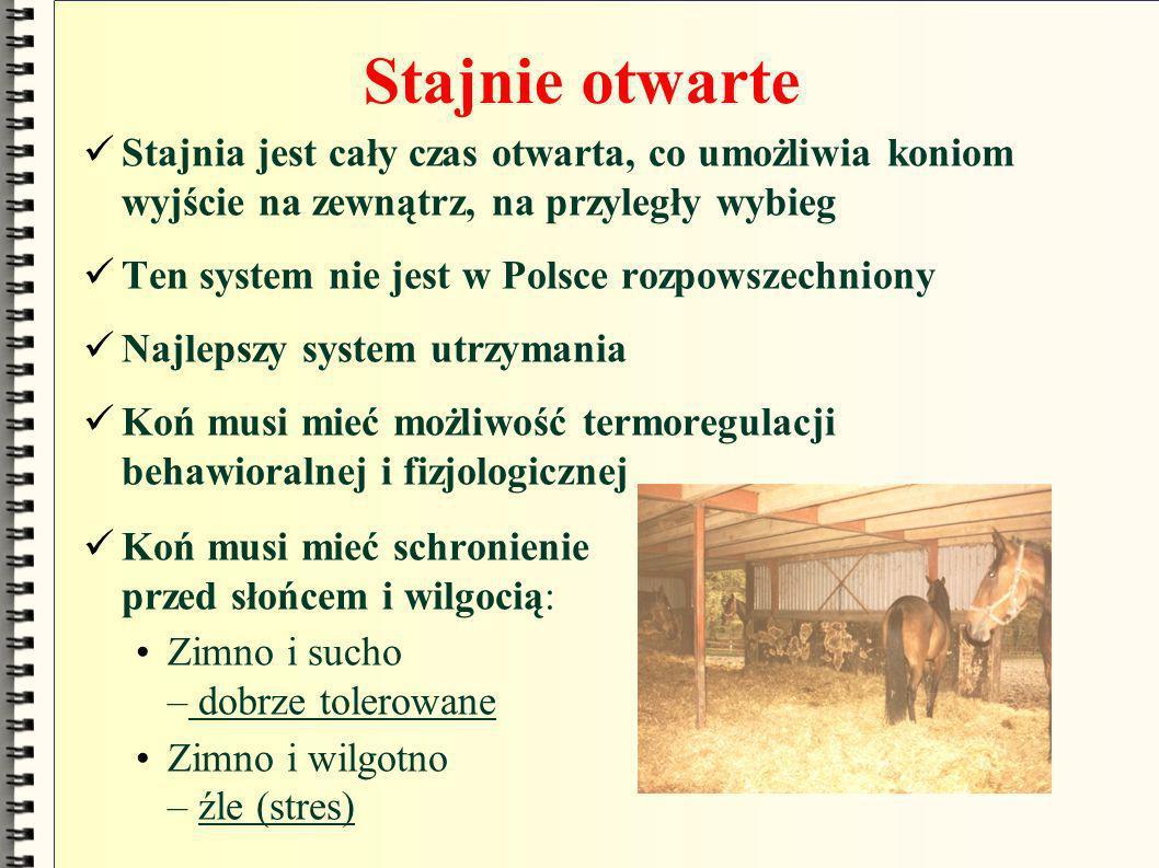 Stajnie otwarte Stajnia jest cały czas otwarta, co umożliwia koniom wyjście na zewnątrz, na przyległy wybieg Ten system nie jest w Polsce rozpowszechn
