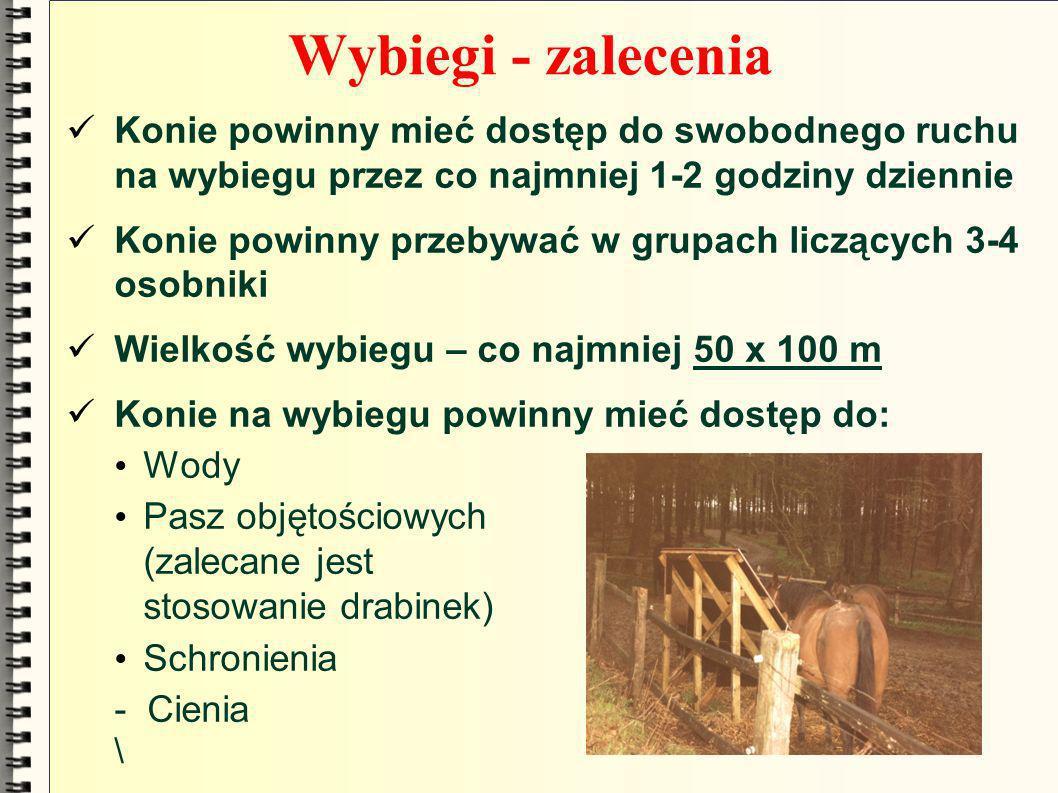 Wybiegi - zalecenia Konie powinny mieć dostęp do swobodnego ruchu na wybiegu przez co najmniej 1-2 godziny dziennie Konie powinny przebywać w grupach