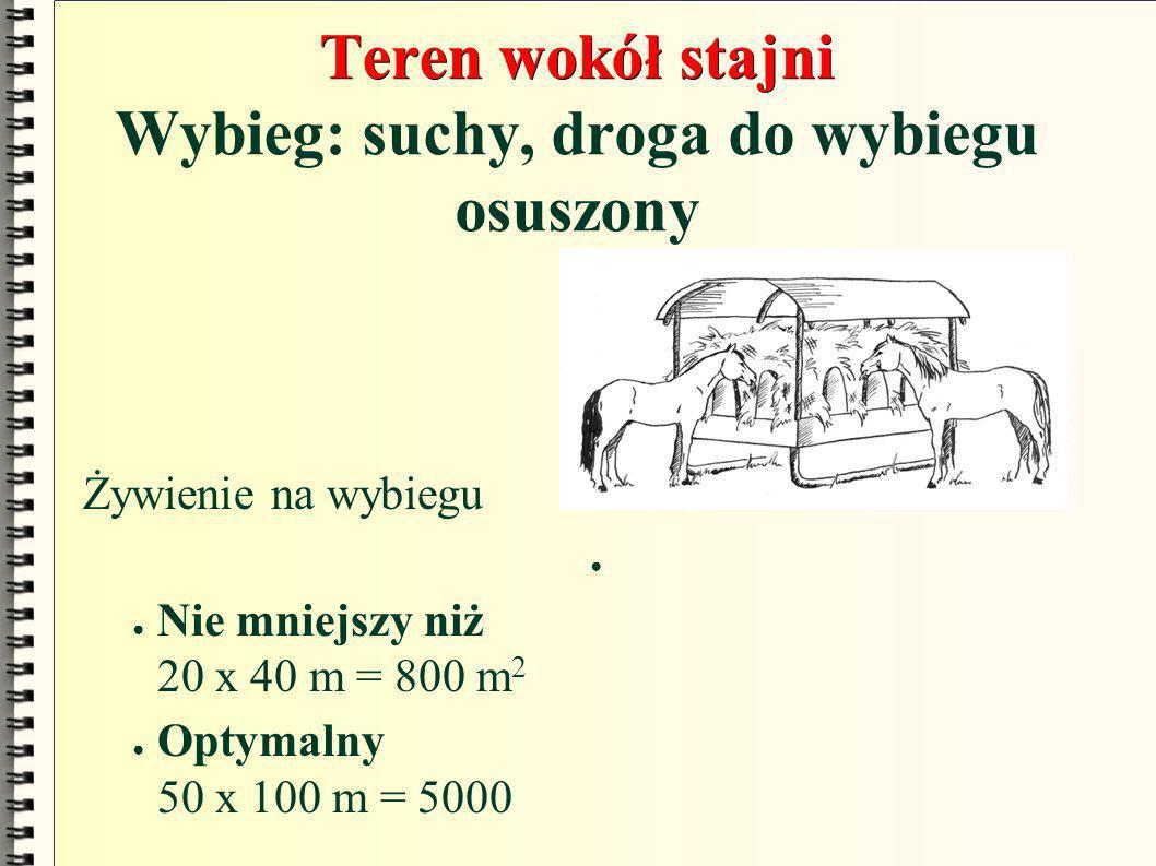 Teren wokół stajni Teren wokół stajni Wybieg: suchy, droga do wybiegu osuszony Żywienie na wybiegu Nie mniejszy niż 20 x 40 m = 800 m 2 Optymalny 50 x