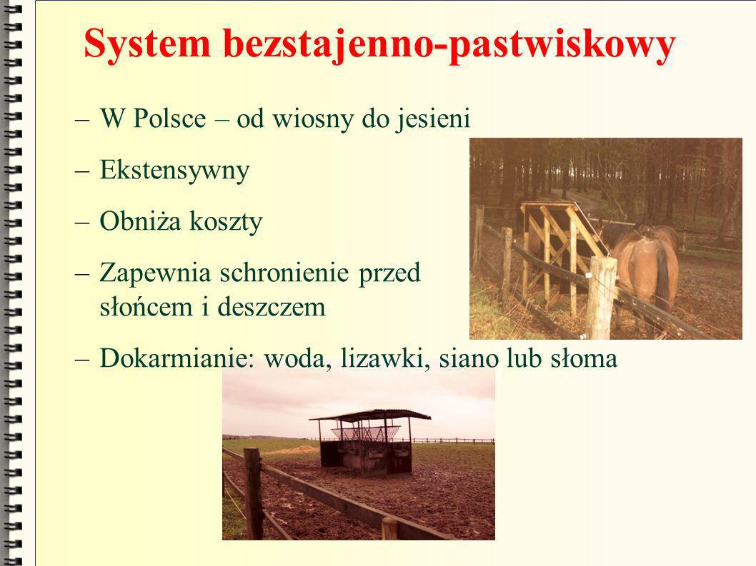 System bezstajenno-pastwiskowy –W Polsce – od wiosny do jesieni –Ekstensywny –Obniża koszty –Zapewnia schronienie przed słońcem i deszczem –Dokarmiani