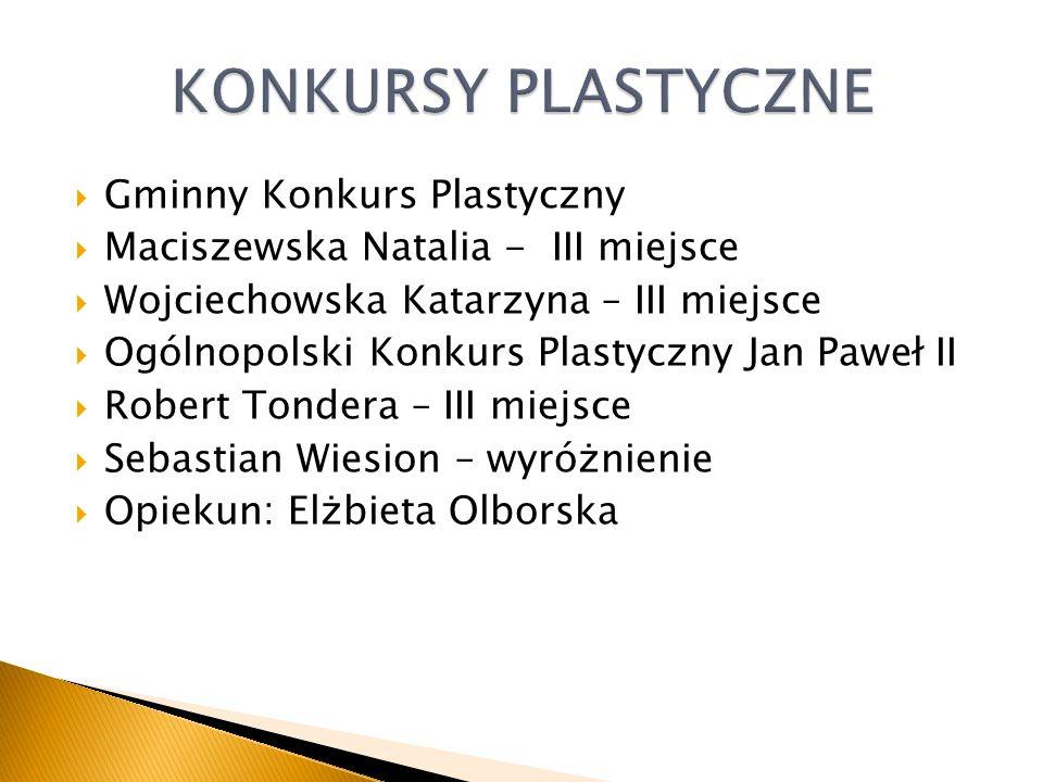 Wyjazd na Zieloną szkołę 2 dni Kraków- Wieliczka -Ojców-Piaskowa Skała Z cyklu : Nasza Mała Ojczyzna - Osuchów – Petrykozy – Mszczonów - Radziejowice – Otrębusy - Karolin