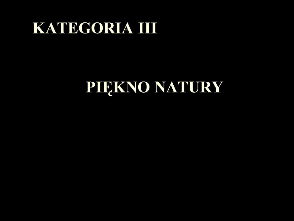 KATEGORIA III PIĘKNO NATURY