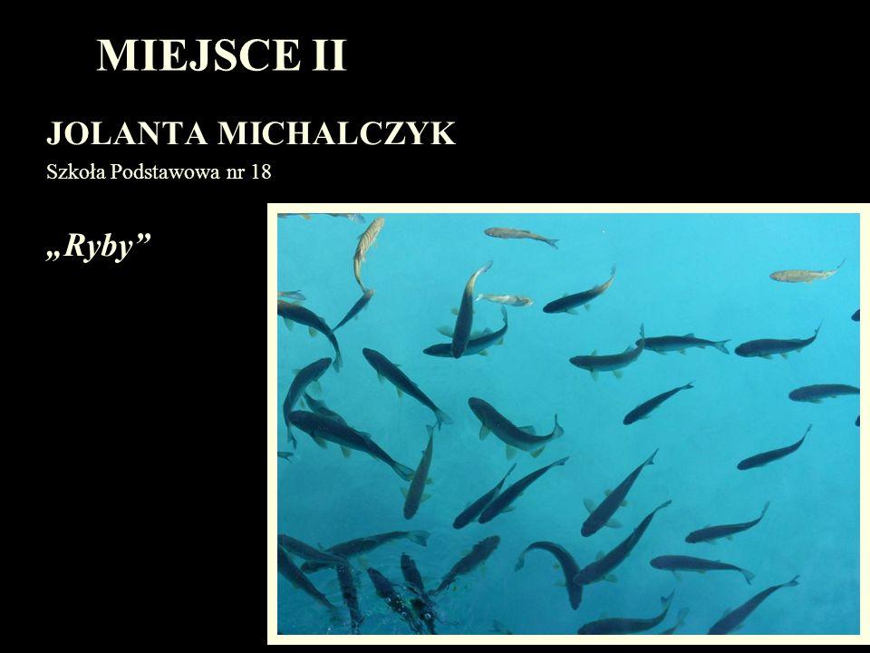 MIEJSCE II JOLANTA MICHALCZYK Szkoła Podstawowa nr 18 Ryby
