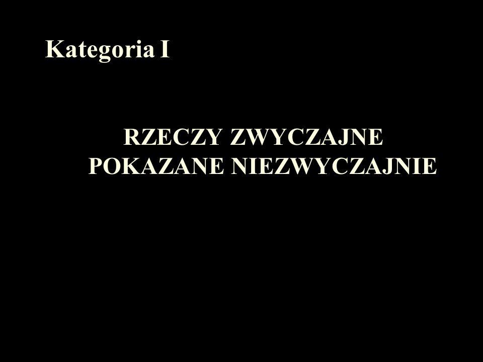 RAFAŁ KAŹMIERCZAK Zespół Szkół Ogólnokształcących im. AK