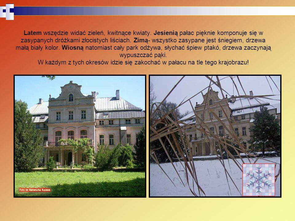 Pałac został zbudowany na wzór pałacu w Czempiniu ok.