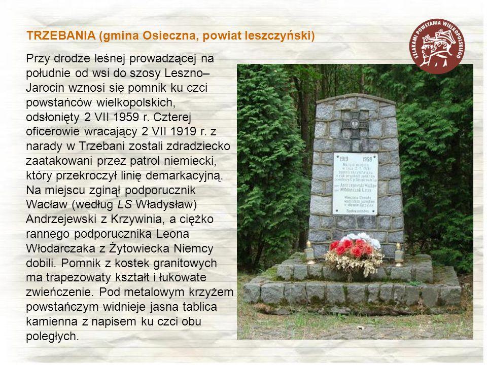 Przy drodze leśnej prowadzącej na południe od wsi do szosy Leszno– Jarocin wznosi się pomnik ku czci powstańców wielkopolskich, odsłonięty 2 VII 1959