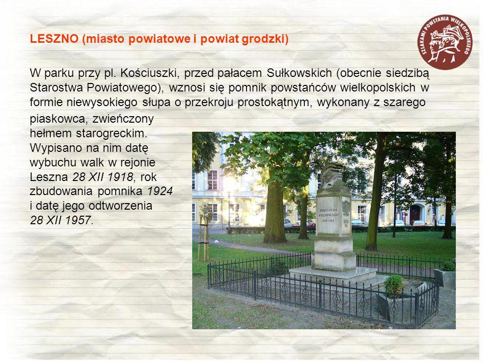 W parku przy pl. Kościuszki, przed pałacem Sułkowskich (obecnie siedzibą Starostwa Powiatowego), wznosi się pomnik powstańców wielkopolskich w formie