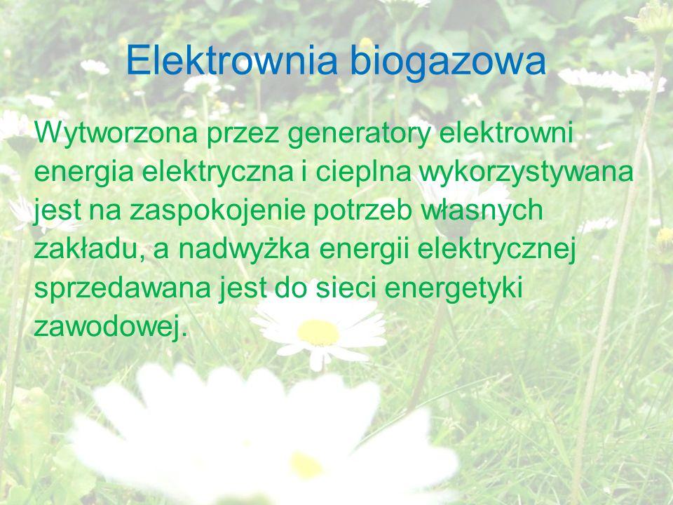 Elektrownia biogazowa Wytworzona przez generatory elektrowni energia elektryczna i cieplna wykorzystywana jest na zaspokojenie potrzeb własnych zakładu, a nadwyżka energii elektrycznej sprzedawana jest do sieci energetyki zawodowej.