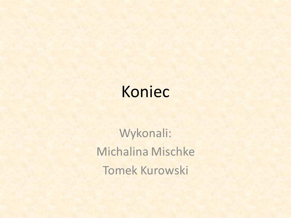 Koniec Wykonali: Michalina Mischke Tomek Kurowski
