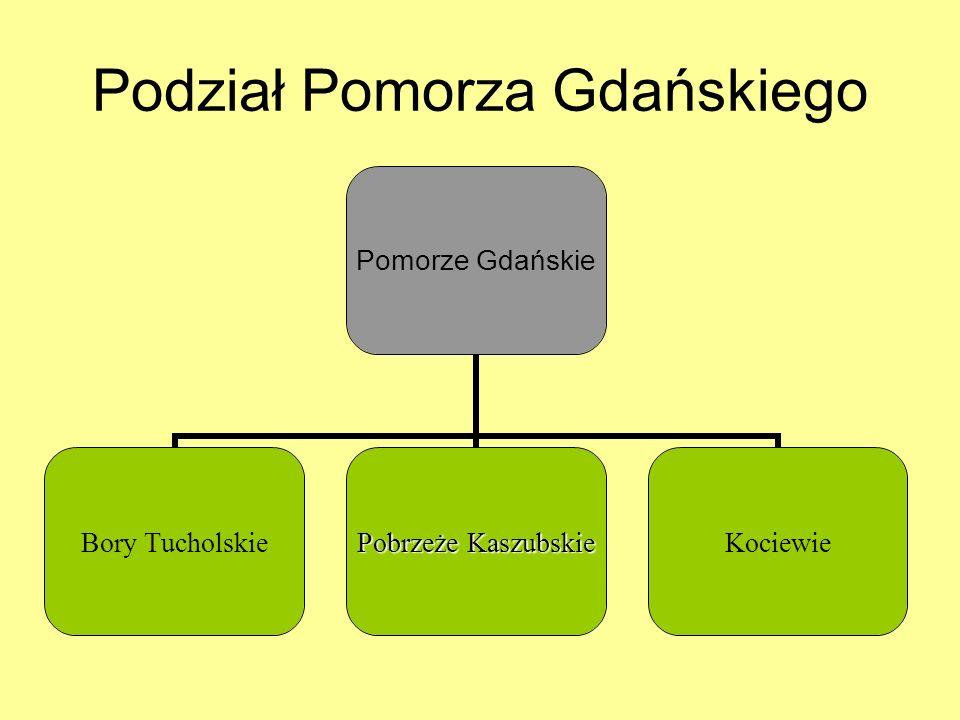 Podział Pomorza Gdańskiego Pomorze Gdańskie Bory Tucholskie Pobrzeże Kaszubskie Kociewie