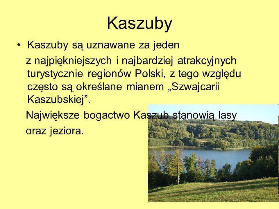 Kaszuby Kaszuby są uznawane za jeden z najpiękniejszych i najbardziej atrakcyjnych turystycznie regionów Polski, z tego względu często są określane mi