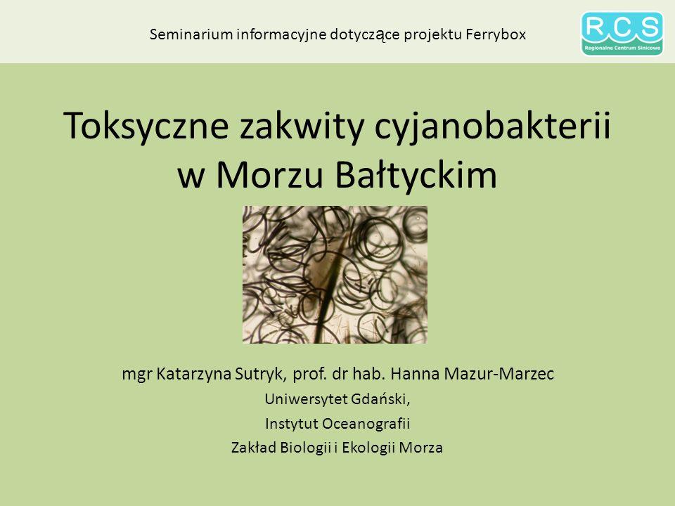 Toksyczne zakwity cyjanobakterii w Morzu Bałtyckim mgr Katarzyna Sutryk, prof.