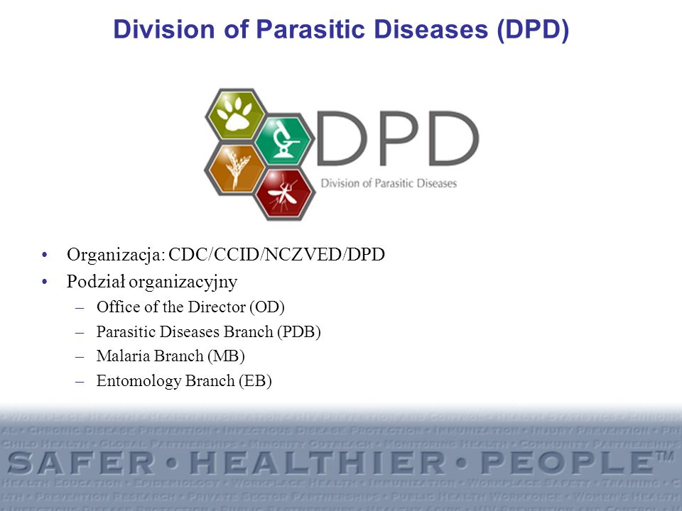 Division of Parasitic Diseases (DPD) Organizacja: CDC/CCID/NCZVED/DPD Podział organizacyjny –Office of the Director (OD) –Parasitic Diseases Branch (P
